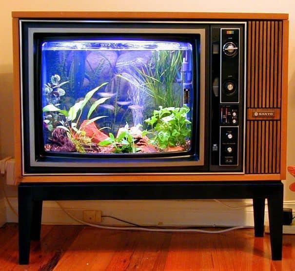 Television Tank Aquarium