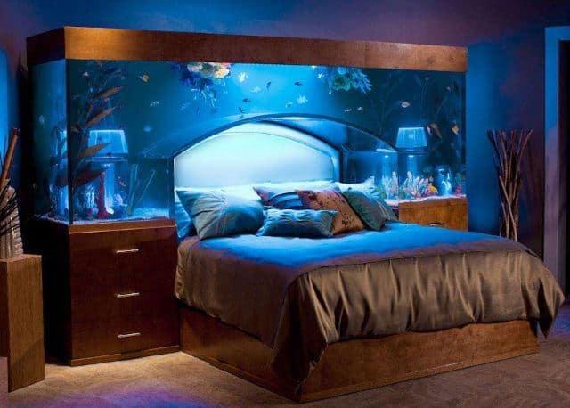 sleeps underneath a whole bunch of fish