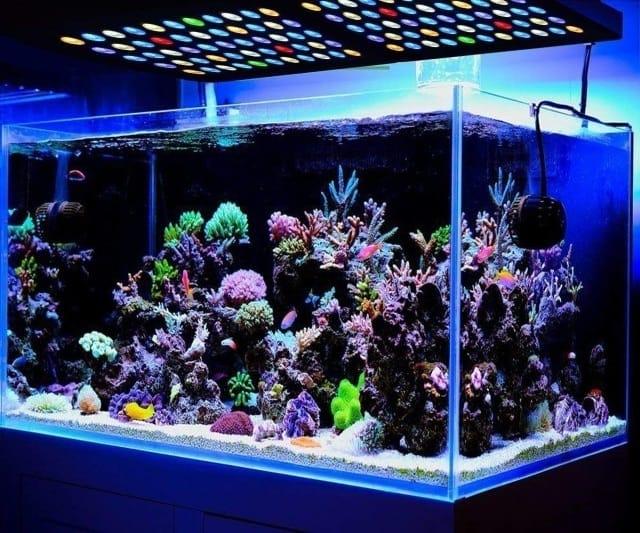 best led aquarium lighting reviews 2018
