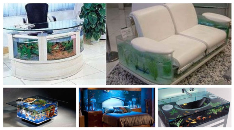 Different kinds of fish tank designs