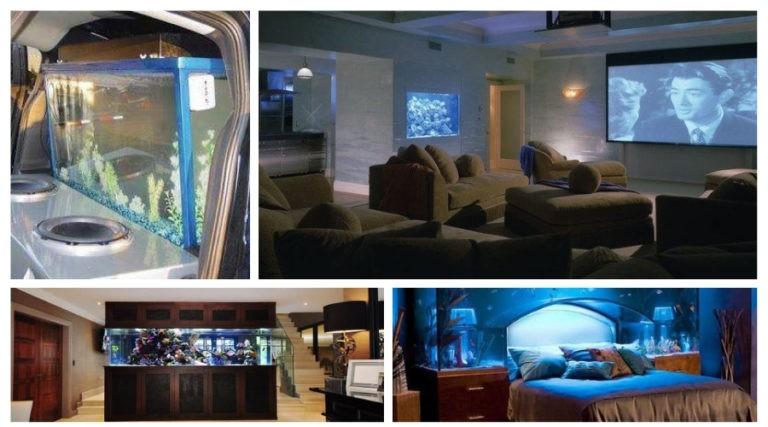 Rooms with aquarium