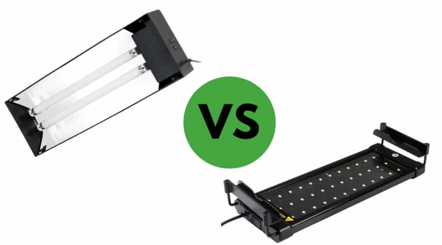 LED VS Fluorescent