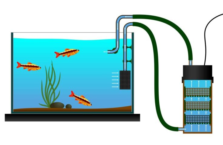 Aquarium equipment. External Aquarium Fish Tank Canister Filter. Vector illustration. The scheme of the external aquarium bio filter. – stock illustration