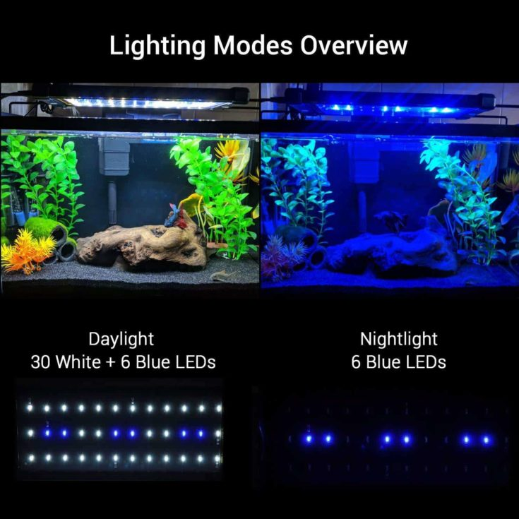 NICREW ClassicLED Aquarium Lighting Modes Overview