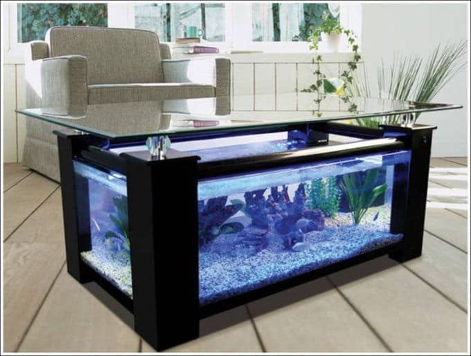 Glass sides and a glass tabletop, Clean landscaping and live plants fish tank