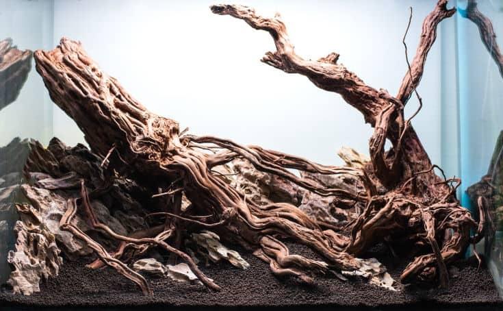 rock and driftwood hardscape arrangement in aquarium tank .