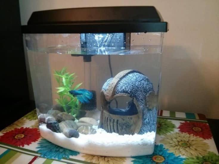Mandalorian fish tank