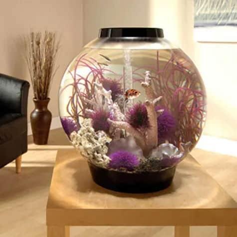 biOrb 16 Gallon Mega Aquarium Kit with Light, Black