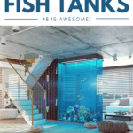 9 Celebrities With Fish Tanks: #8 Is Awesome! - Pin