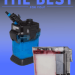 Canister Filter VS Power Filter: Which One Is The Best For You? - Pin
