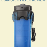Cascade 1000 Canister Filter Review