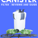 Finding The Best Canister Filter – Reviews and Guide