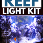 How to Make Your Own Reef Light Kit - Pin