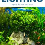 The Best LED Aquarium Lighting Reviews on the Net - Pin