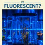 Which is Better: Aquarium Light LED VS Fluorescent? - Pin