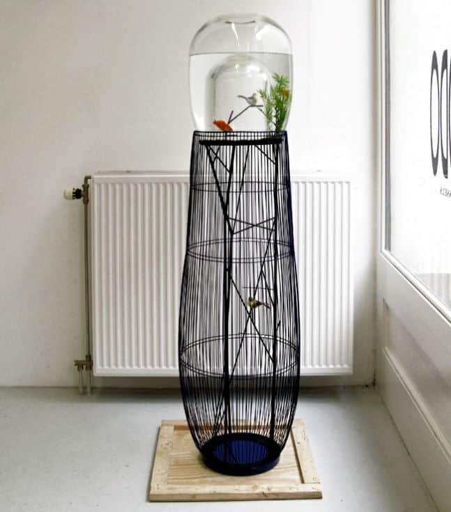 Aquarium and bird cage in a design