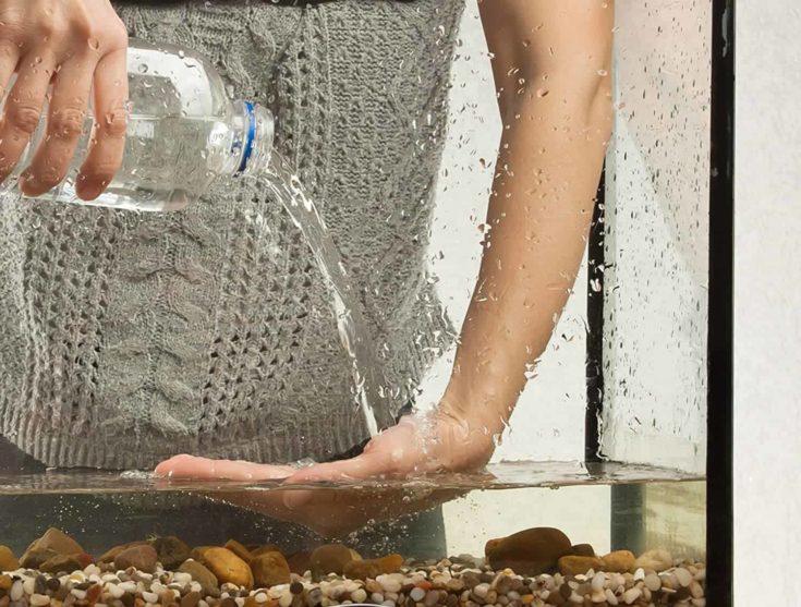 Applying salt treatment to aquarium water.