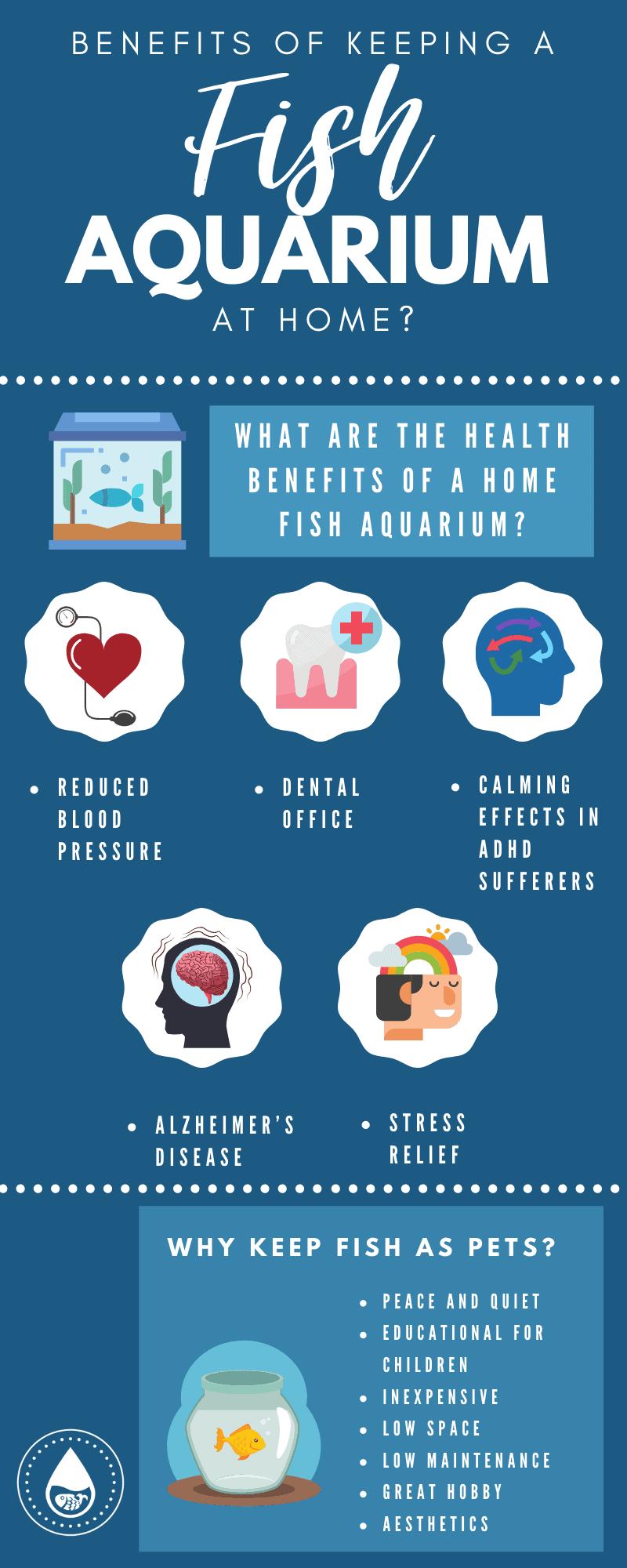 Benefits of Keeping a Fish Aquarium At Home - Infographic