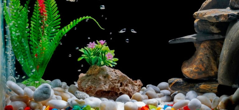 Aquarium with decorations and bubbles on water.
