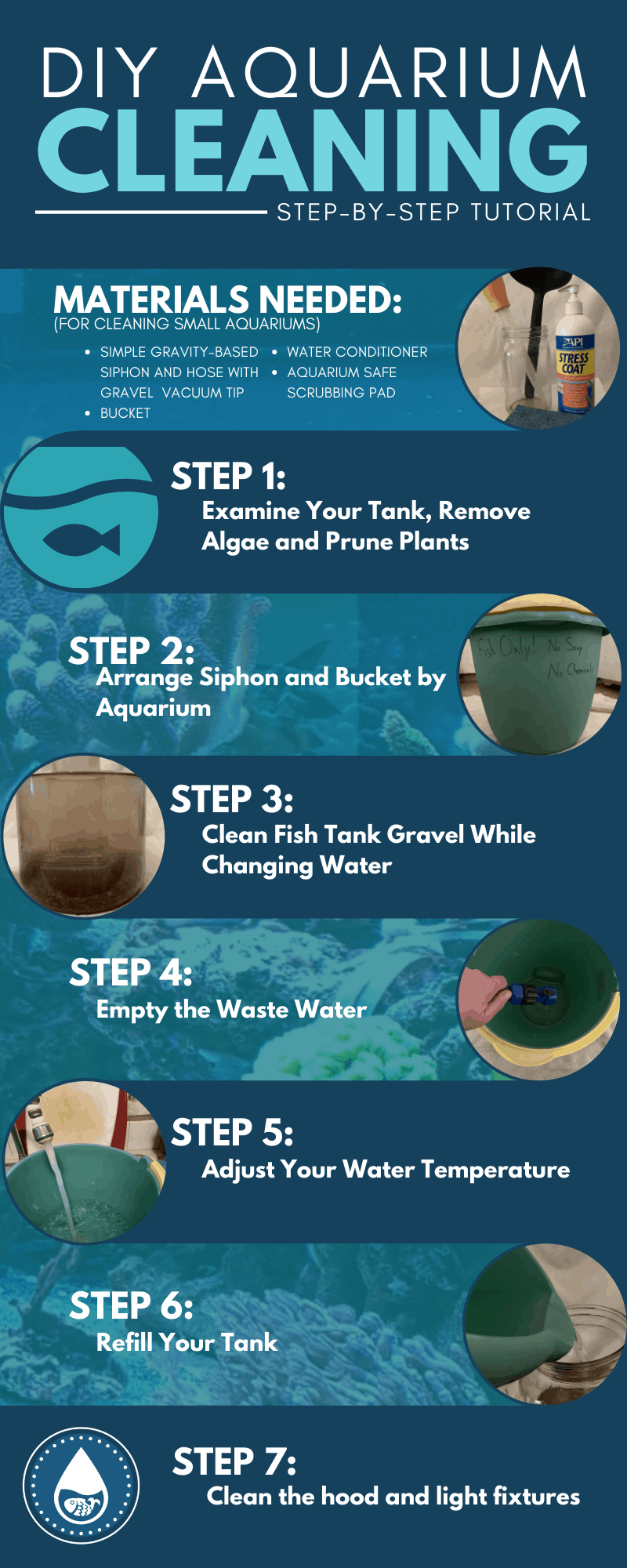 DIY Aquarium Cleaning—Step-by-Step Tutorial - Infographic