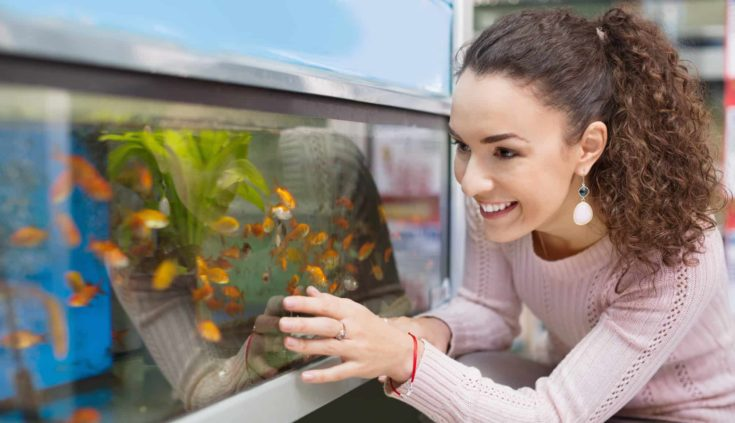 Positive brunette girl looking at tropical fish in aquarium