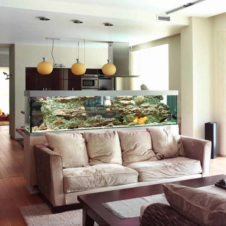 Beautiful aquarium in the living room.