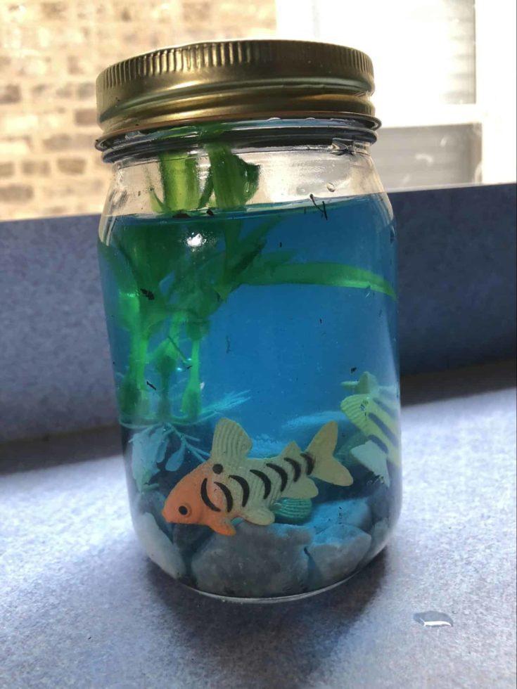 DIY aquarium jar.