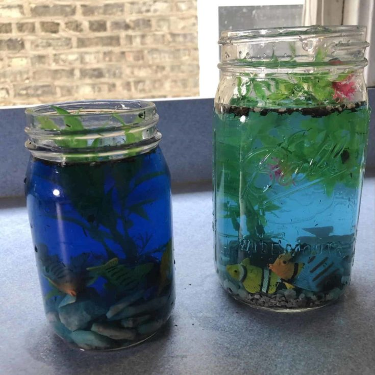 Two aquarium jars - one with dark blue water and the other one with light blue water.