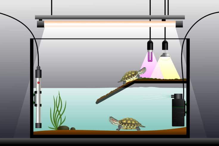 Aquaterrarium, UV sterilizer