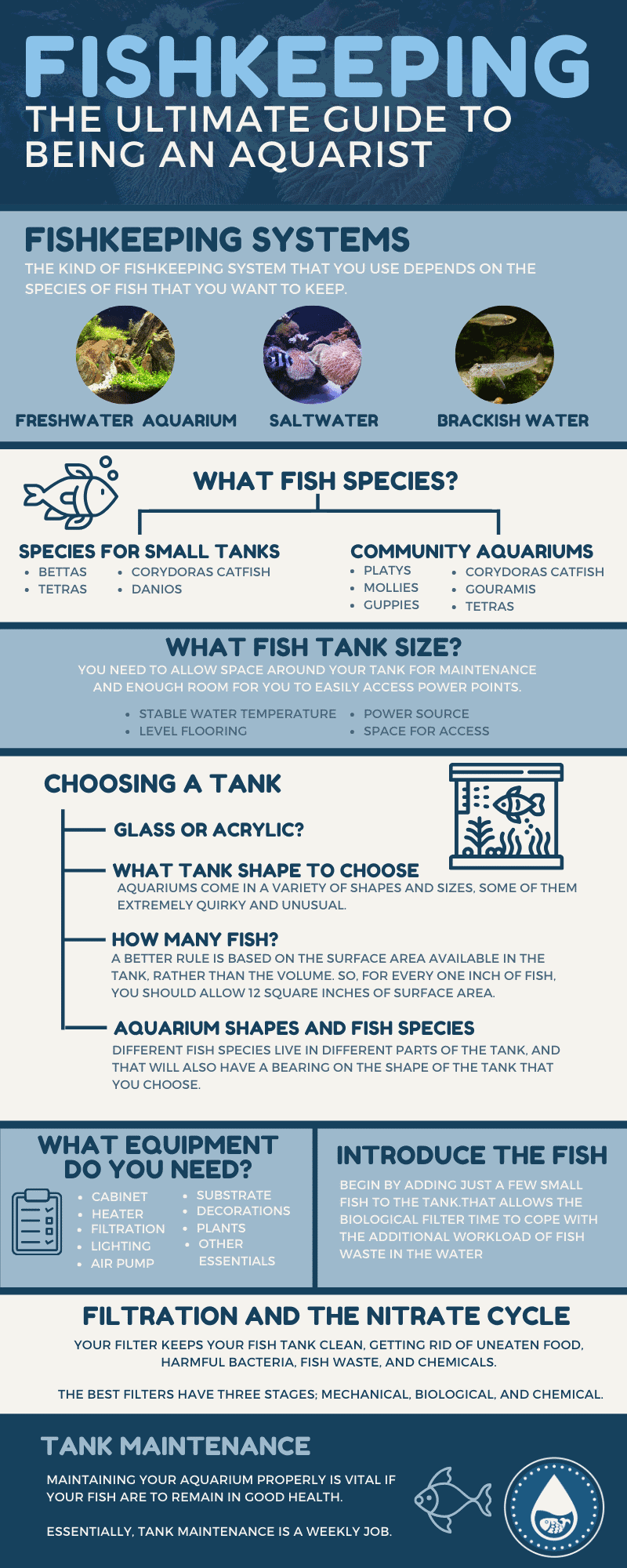 Fishkeeping - The Ultimate Guide to Being an Aquarist - infographics