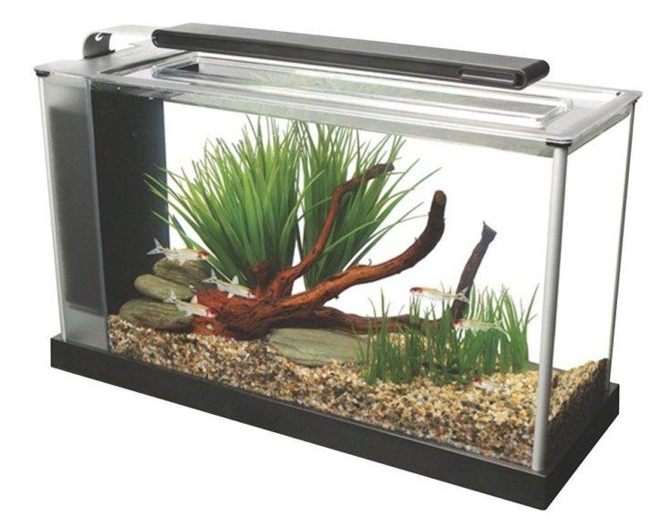 Fluval 5 Gallon Spec V Aquarium Kit