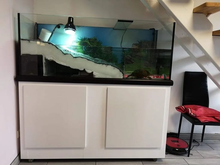 Aquatic Turtle Tank With Underwater Tunnel