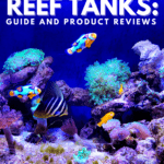 Best Nano Reef Tanks:Guide and Product Reviews - Pin