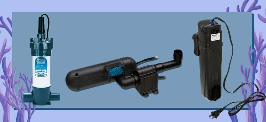 Best UV Sterilizers for Aquariums