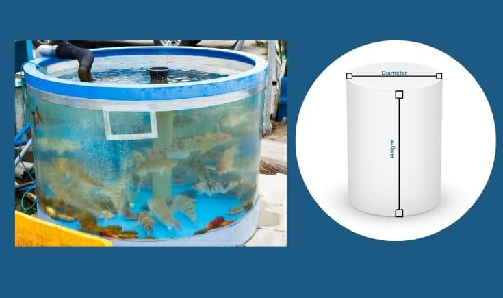 Outdoor cylindrical aquarium with koi fish. Dimensional measurements for a cylindrical aquarium.