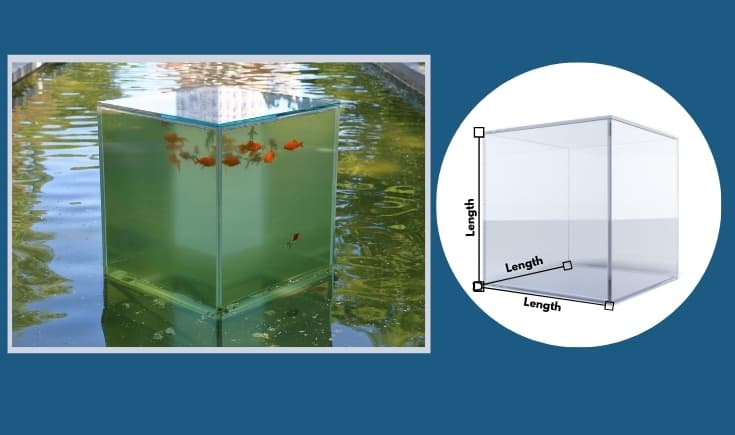 An unusual aquarium in the form of a cube stands on the surface . Guide on measuring cube glass aquarium.