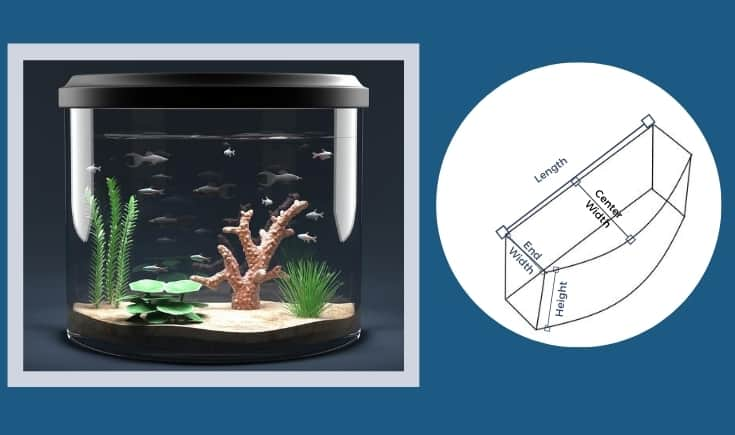 Bowfront Fish Aquarium. Measuring dimensions of a bow fish aquarium.