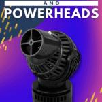 Best Aquarium Wavemakers and Powerheads - Pin