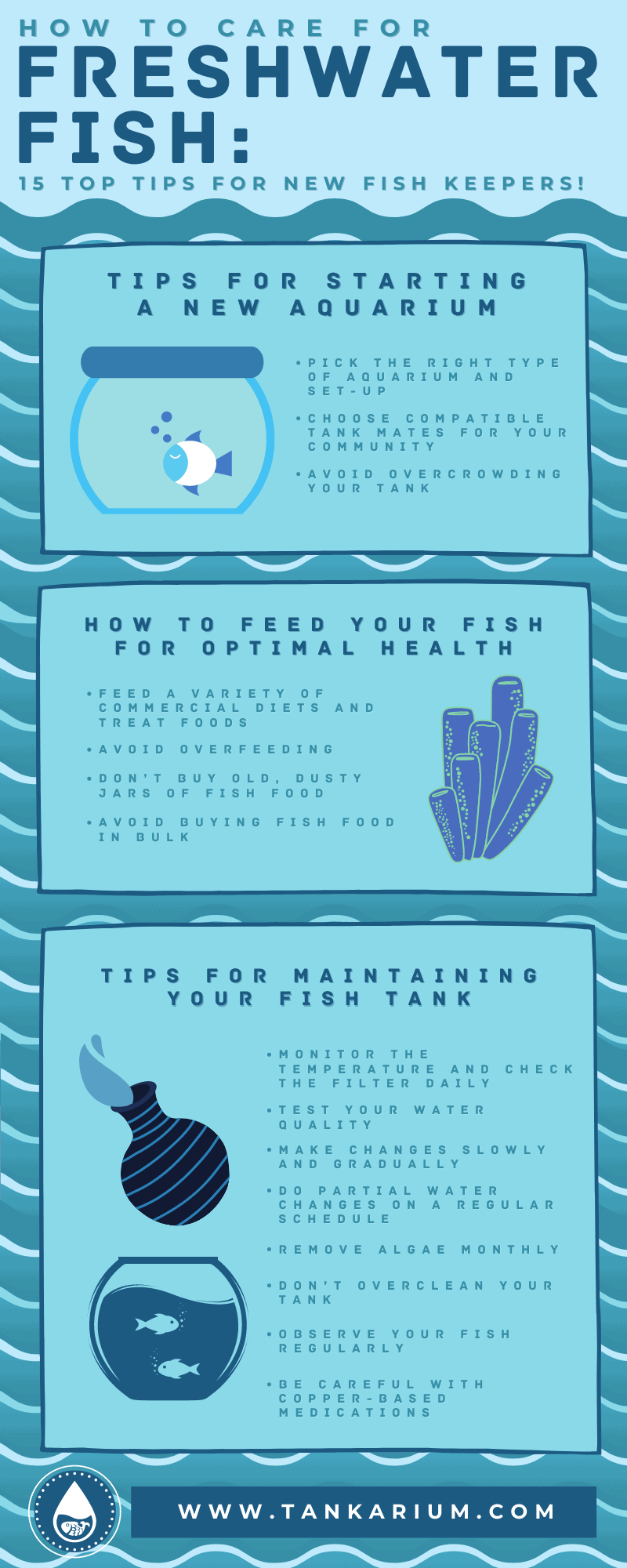 How to Care for Freshwater Fish_ 15 Top Tips for New Fish Keepers!- infographics