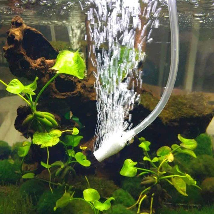 JZMYXA Air Stones Bubble Stones Fit for Aquarium Fish Tank, 0.98 inch, 10 Pieces