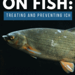 White Spots on Fish: Treating and Preventing Ich - Pin
