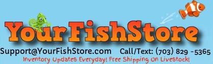 Yourfishstore.com logo