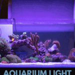 Aquarium Light VS Grow Light - What's The Difference? - pin