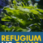 Refugium VS Sump: What's The Difference? Pin