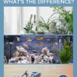 Terrarium, Aquarium, Vivarium - What's The Difference?- pin