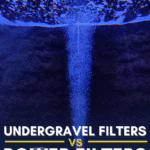 Undergravel Filters vs Power Filters: Guide to Aquarium Filtration Systems - Pin