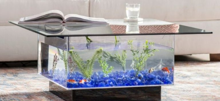 Fish Tank Coffee table with book and glass on the top