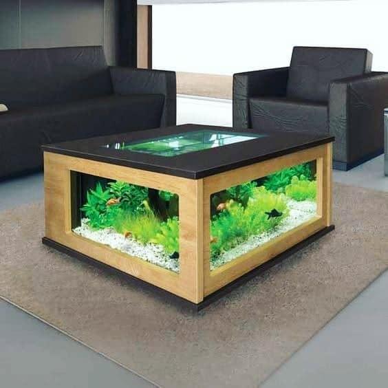 11 Best Fish Tank Coffee Tables Cool, Round Aquarium Coffee Table