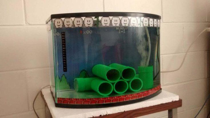 Mario Bros Fish Tank
