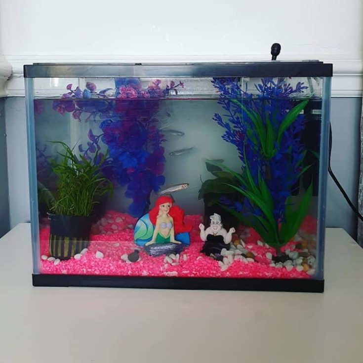 Little Mermaid tank
